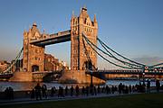 Tower Bridge in evening light. One of London's most famous landmarks, seen here in golden winter evening sun.