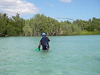 A local hunter tries to catch fish with a spear in the mangroves, northern part of Western Australia