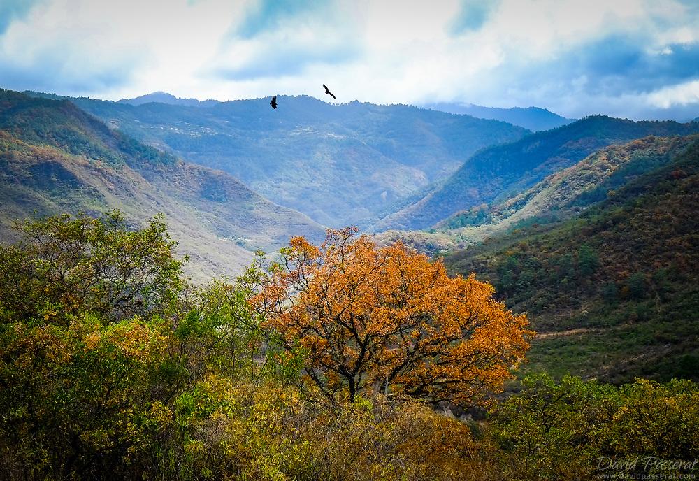 Valley landscape near san Miguel Amatlán