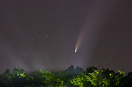 Comet Neowise shines above the trees on a foggy night at Fancher-Davidge Park in Middletown, N.Y., on July 17, 2020.