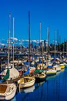 Downtown Seattle skyline with Lake Washington in the foreground, Seattle, Washington USA.