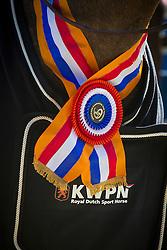 Van Liere Anne Martine (NED) - Chuck<br /> KWPN Paardendagen - Ermelo 2012<br /> © Dirk Caremans