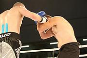 Boxing: Cruiserweight, Heavyweight, Adrian Granat (SWE) - Andreas Kapp (AUT), Hamburg, 16.05.2014<br /> Andrian Granat (SWE, l.) - Andreas Kapp (AUT)<br /> ©Torsten Helmke