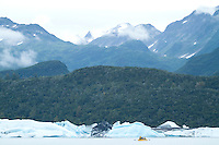 """Rowing accross Lake Alsek past ice bergs while on a raft trip down the Tashenshini River. The """"Tat"""" flows out of Yukon, CA, through British Columbia and empties into Glacier Bay National Park in Alaska, US."""