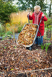 Making leaf mould. Carol Klein emptying wheelbarrow full of leaves onto heap