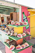 Beach side shell shop in Dunmore Town, Harbour Island, The Bahamas