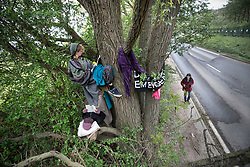 © Licensed to London News Pictures. 28/04/2019. London, UK. Extinction Rebellion activists read books as they join with Stop HS2 protestors to occupy trees in Colne Valley to stop their felling for the HS2 rail project. Workers were expected to start cutting down the trees yesterday and to continue today but the protests have stopped the work. Photo credit: Peter Macdiarmid/LNP