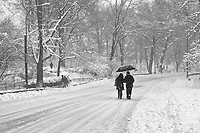 A walk on the east drive in Central Park during a snow storm.