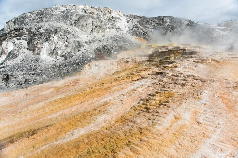 Yellow Stone National Park, Wyoming