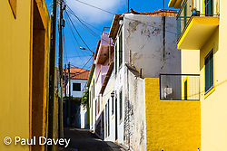 MADEIRA, September 26 2018. © Paul Davey
