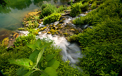 Stock photo of a natural spring feeding into the Llano River in the Texas Hill Country