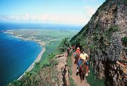 Mule Ride, Kalaupapa, Molokai, Hawaii