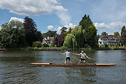 """Maidenhead, United Kingdom.   """"Double"""",""""Thames Punting Club Regatta"""", Bray Reach.<br /> 12:45:05 Sunday  06/08/2017<br /> <br /> [Mandatory Credit. Peter SPURRIER Intersport Images}.<br /> <br /> LEICA Q (Typ 116) 28mm  f1.7   1/6400 /sec    100 ISO River Thames, .......... Summer, Sport, Sunny, Bright, Blue Skies, Skilful,"""