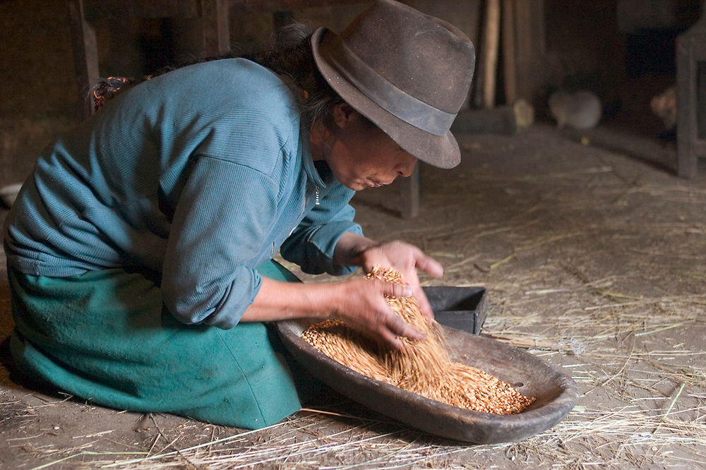 Wearing a traditional Andean felt hat, Ermelinda Ayme spends part of her morning in the windowless cooking hut, cleaning barley in the light from the doorway. After she blows away the dust and chaff, the grain is ready to be ground for breakfast porridge. Hungry Planet: What the World Eats (p. 114). (MODEL RELEASED IMAGE).