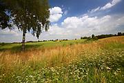 2009-08-09. Mazurski krajobraz - okolice Kętrzyna
