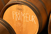 An oak barrel marked 'primeur' for the young wine to be presented to the trade - Château Pey la Tour, previously Clos de la Tour or de Latour, Bordeaux, France