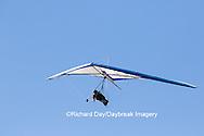 62995-00608 Hang Glider at Torrey Pines Gliderport La Jolla, CA