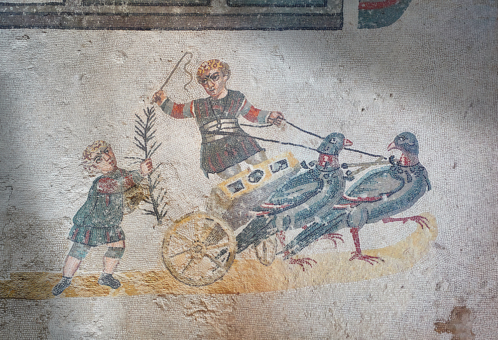 Close up picture of the Roman mosaics of the room of the Small Circus depicting Roman boys riding small chariots pulled by pigeons in a small circus, The Vestibule of The Smnall Circus, room no 41  at the Villa Romana del Casale, first quarter of the 4th century AD. Sicily, Italy. A UNESCO World Heritage Site.<br /> <br /> The Roman mosaic know as the Small Circus at the Villa Romana del Casale depicts a scene of a chariot race from the Circus Maximus in Rome. Two wheeled chariots, driven by children,  are racing around a central Pina (barrier) being drawn by fowl and web footed birds. The four chariots represent the four factions that raced against each other at the Circus and the tunics of the cild charioteers and the birds pulling their chariots are distinguished by the four different colours used by each faction. .<br /> <br /> If you prefer to buy from our ALAMY PHOTO LIBRARY  Collection visit : https://www.alamy.com/portfolio/paul-williams-funkystock/villaromanadelcasale.html<br /> Visit our ROMAN MOSAICS  PHOTO COLLECTIONS for more photos to buy as buy as wall art prints https://funkystock.photoshelter.com/gallery/Roman-Mosaics-Roman-Mosaic-Pictures-Photos-and-Images-Fotos/G00008dLtP71H_yc/C0000q_tZnliJD08