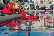 Vita Wooolfe, 6 3/4 (fur lined hood), pushes a wreath into the fountain - Silence in the Square oraganised by the British Legion in Trafalgar Square  - 11 November 2016, London.