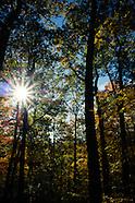 Tanglewood Nature Center