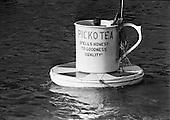 1965 -Picko Tea Cup in the river Liffey, Dublin, Ireland