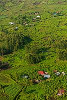 Aerial views of tea and banana crops near Kasese, Uganda.