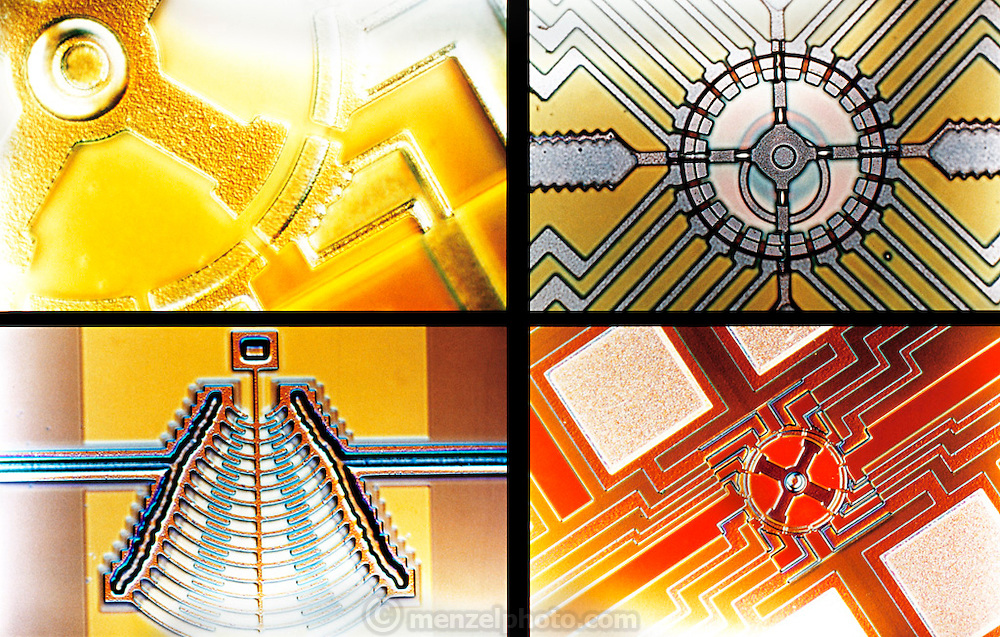 Micro Technology: Micromechanics at the University of California, Berkeley, Cory Hall. Display of micrographs of micro electrical manipulators at the microelectromechanical system (MEMS) lab. [2000]