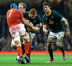 Thomas du Toit of South Africa under pressure from Justin Tipuric of Wales<br /> <br /> Photographer Simon King/Replay Images<br /> <br /> Under Armour Series - Wales v South Africa - Saturday 24th November 2018 - Principality Stadium - Cardiff<br /> <br /> World Copyright © Replay Images . All rights reserved. info@replayimages.co.uk - http://replayimages.co.uk