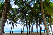 Aug. 2018, Hoi an: Cua Dai Beach in Hoi an where there's plenty of palm trees but small sand beach. Overlooks Cham Island across the water. RAW to Jpg