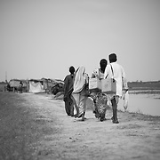 A vaccinator team approach isolated houses during vaccination day on the flood plains of the Kosi river near Kusheshwar Asthan (E), Bihar.