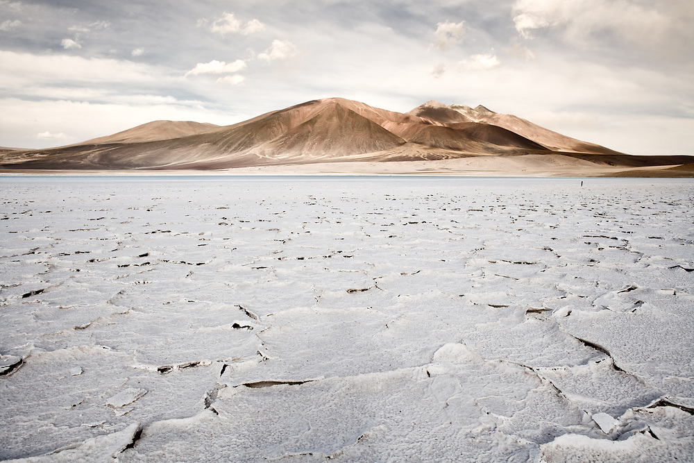 Salt crust in the shore of lagoon and salt lake Tuyajto, Altiplano (High Andean Plateau), Los Flamencos National Reserve, Atacama desert, Antofagasta Region, Chile, South America