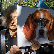 The United Kingdom government secretly legalizes 13-month-old puppies for experiments on animals a slow cruel torturer for three months until death. Animal rights protestors demand Home Secretary Priti Patel stop the use of dogs in animal experiments at the front of Home Office, London, UK on 23rd September 2021.