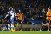Brighton central midfielder, Dale Stephens (6) argues a decision with Referee Christopher Kavanagh during the Sky Bet Championship match between Brighton and Hove Albion and Wolverhampton Wanderers at the American Express Community Stadium, Brighton and Hove, England on 1 January 2016. Photo by Phil Duncan.