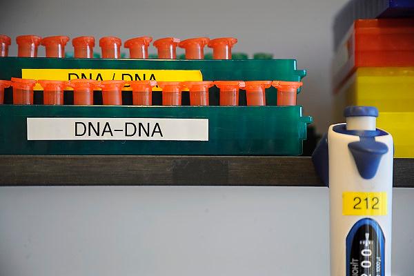 Nederland, Nijmegen, 19-11-2010Academisch ziekenhuis UMC Radboud, biobank, opslag van organisch materiaal, dna, uit bloed, urine of weefsel van patienten dat gebruikt wordt voor onderzoek naar o.a. erfelijke ziektes.Tubes with samples of genetic and epidemiological material stored in a freezer of the UMC-Radboud. The aim is to find out the genetic component of a derogation.This may lead in the future to better advice or treatment methods. Foto: Flip Franssen