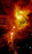 Newborn stars, hidden behind thick dust, are revealed in this image of a section of the Christmas Tree cluster.