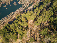 Aerial view of vegetation around Colombia river in Oregon, USA.