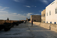 Morocco, Essaouira. Walls of the town in the late afternoon light.