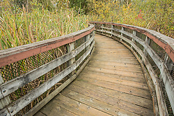 United States, Washington, Kirkland, boardwalk at Totem Lake
