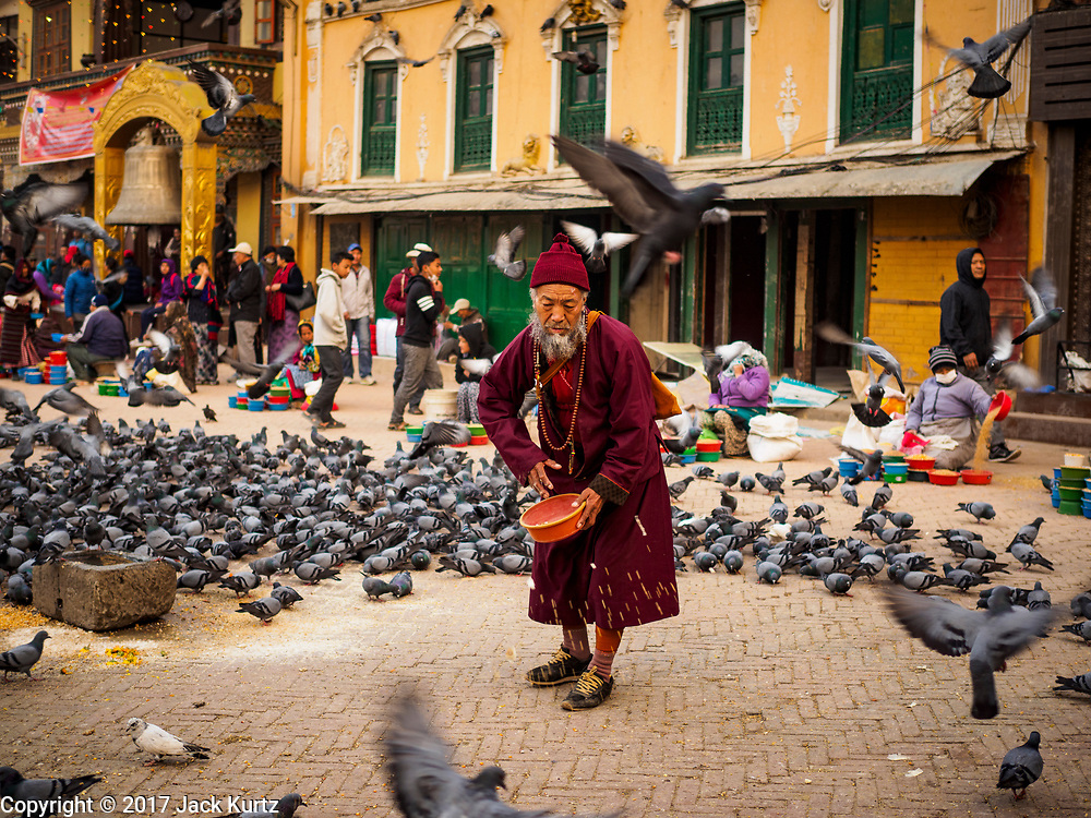 16 MARCH 2017 - KATHMANDU, NEPAL: A Buddhist monk feeds pigeons in a plaza at Boudhanath Stupa in Kathmandu. It is the holiest site in Nepali Buddhism. It is also the center of the Tibetan exile community in Kathmandu. The Stupa was badly damaged in the 2015 earthquake but was one of the first buildings renovated.      PHOTO BY JACK KURTZ