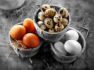 Quails, chicken & duck eggs