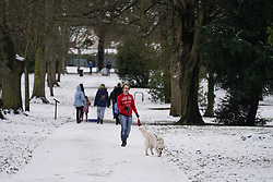 © Licensed to London News Pictures. 02/1/2021.A man walks a dog at North Park in Darlington  following a snowfall last night.  Photo credit: Ioannis Alexopoulos/LNP