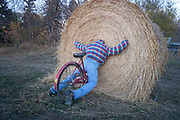 A local land owner with a sense of humour. A stuffed body dressed in farm clothes rides a bicycle headlong into a circular bail of hay.