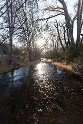 Palomas Creek, Ladder Ranch, west of Truth or Consequences, New Mexico, USA.