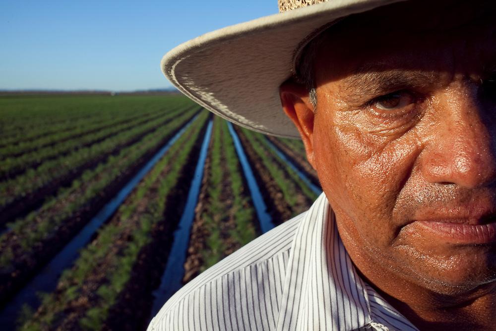 Portrait of irrigator Raul Rodriquez in a Waymon Farms fennel field.  The field is located south of Somerton, Arizona.