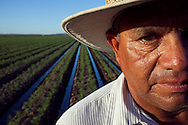 Portrait of irrigator Raul Rodriquez in a Waymon Farms fennel field.  The field is located south of Somerton, Arizona.