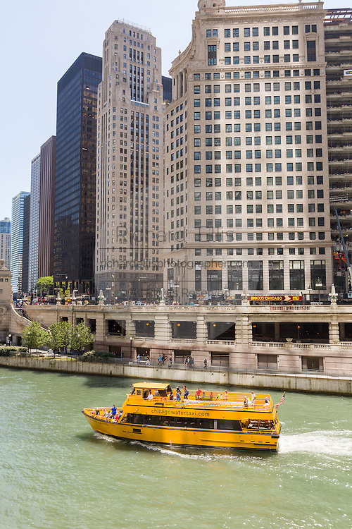 The water taxi travels down the Chicago River near the DuSable Bridge on a summers day in Chicago, Illinois, USA