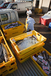 Fishmongers unloading boxes of haddock at their premises