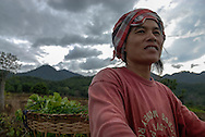 A woman carries greens towards her home in the city of Pai, Thailand
