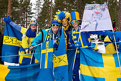 March 16, 2019 - Falun, SVERIGE - 190316 Audience  during the FIS Cross-Country World Cup on march 16, 2019 in Falun  (Credit Image: © Daniel Eriksson/Bildbyran via ZUMA Press)