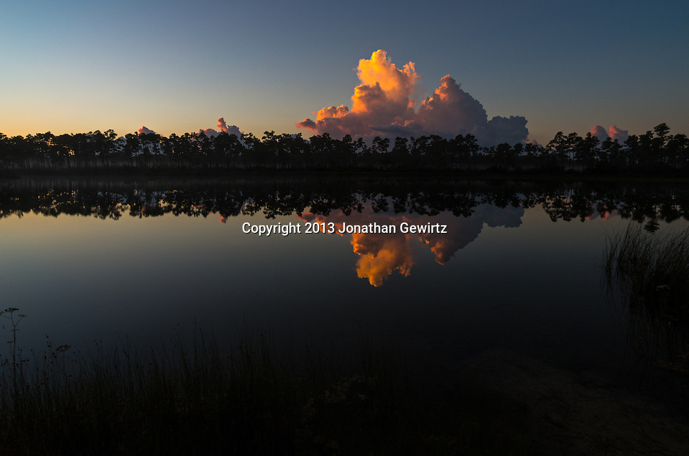 Pre-dawn fog lingers in the slash pines, as distant clouds bask in the sunrise and reflect on the pond at Long Pine Key in Everglades National Park, Florida. WATERMARKS WILL NOT APPEAR ON PRINTS OR LICENSED IMAGES.